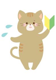 初心者のネコ