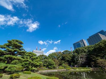 東京 皇居と都市風景