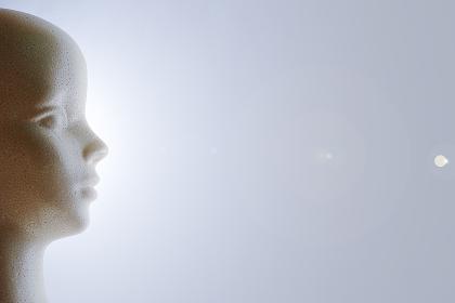 発泡スチロール製モデル人形の右向きの横顔