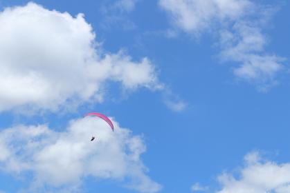青空を舞うパラグライダー