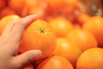 ネーブルオレンジをつかむ手