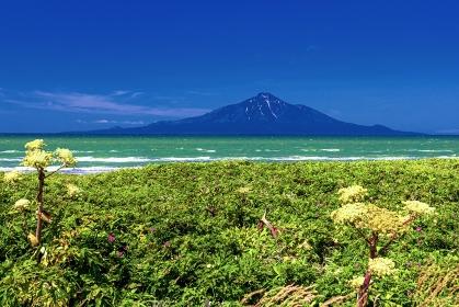 北海道・豊富町 初夏のオロロンラインから眺める海と利尻富士の風景