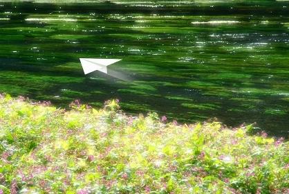 清流と紙飛行機