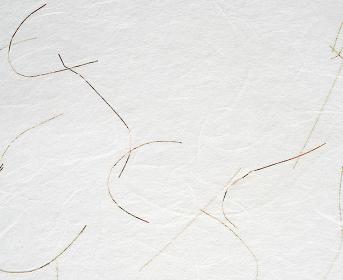 金線が入った白いすき紙のテクスチャー