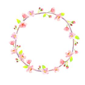 水彩で描いた桜の円フレーム