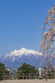 【青森県】弘前公園の桜と岩木山