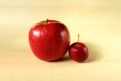 並んだリンゴと姫リンゴ 2