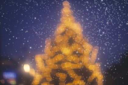 クリスマスツリーと星空