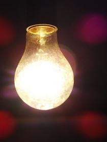 白熱電球の裸電球