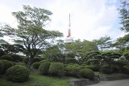 八幡山公園と宇都宮タワー