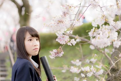 桜の木の下で卒業証書を持つ女子高生