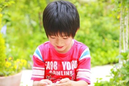 お庭で遊ぶ赤いTシャツを着た男の子