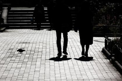 休日の昼下がりの公園で逆光に浮かぶシルエッ