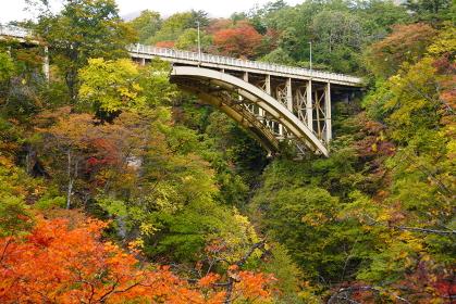 紅葉の鳴子峡と大深沢大橋の風景