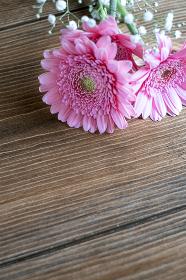 テーブルの上に置かれたガーベラ