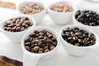 6段階に焙煎されたコーヒー豆