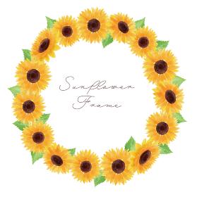 ひまわり ヒマワリ 向日葵 枠 フレーム 黄色 円形 夏 花 イラスト 手描き
