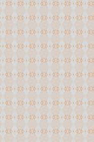 ミカン色縞模様パターン