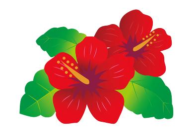 南国 熱帯 植物 花