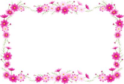 ピンクのグラデーションのコスモスのフラワーアレンジメントのフレーム、カットイラスト、秋イメージ
