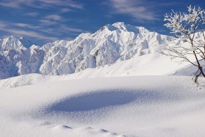 白馬八方尾根から望む五竜岳