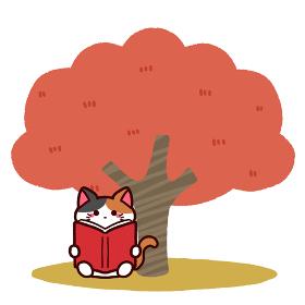 読書の秋 木の下で本を読む猫