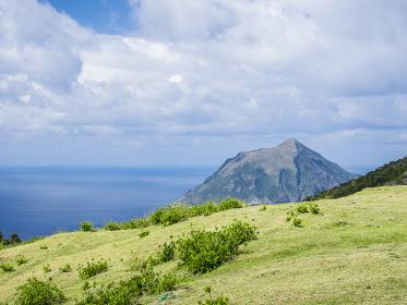 八丈島のふれあい牧場から風景 3月