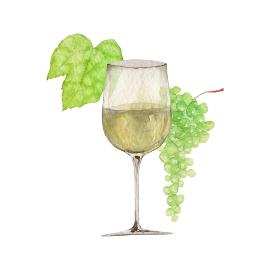 白ワインと白ブドウ イラスト 水彩