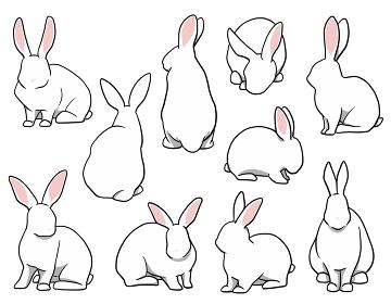 おすわりウサギ ホワイトセット