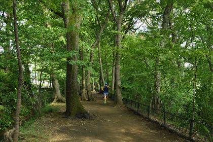 玉川上水緑道の風景(走る人)