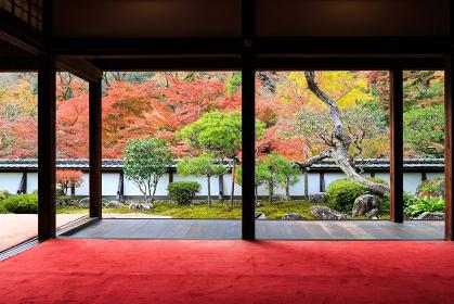 正暦寺 (2012/11/20撮影)
