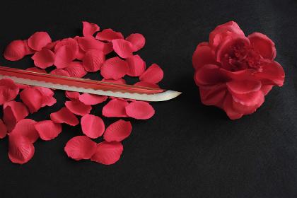 赤いバラと居合練習刀の刀身