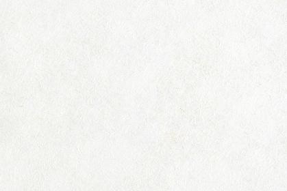麻混和紙 白 5788