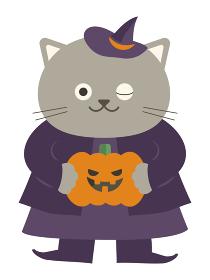 ハロウィン:ジャックオランタン(かぼちゃ)を持ち魔女の仮装をしたネコ・全身イラスト