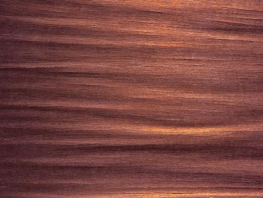 樹皮のテクスチャ ブラウン 1237