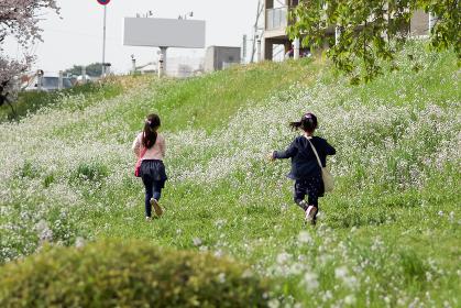 野原を走る二人の女の子達