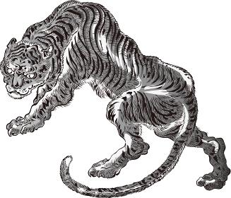 虎 その3