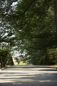 神奈川県 横浜市 大倉山公園
