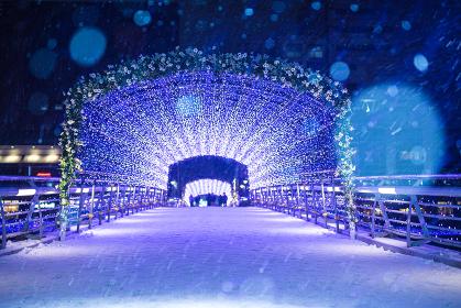 雪の降る小倉イルミネーション夜景