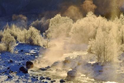 冬景色 白馬村の霧氷