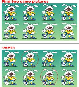 同じもの探し、ウサギのサッカー選手