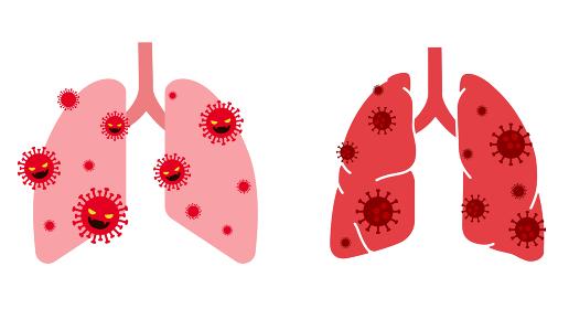 タイトル ウイルスと肺の図