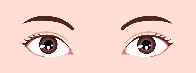 目・眼の種類 ベクターイラスト / 下三白眼