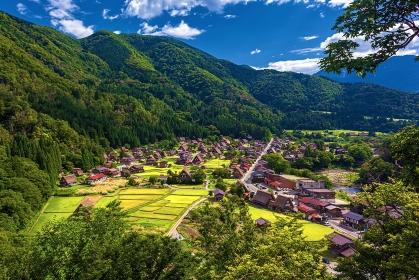 岐阜県・夏の白川郷の風景