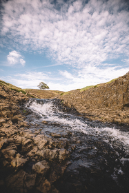 Creek flows across Northern California Plateau with Distant Lone Oak
