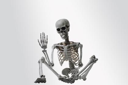 座り込む骸骨