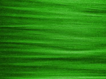 樹皮のテクスチャ グリーン1237