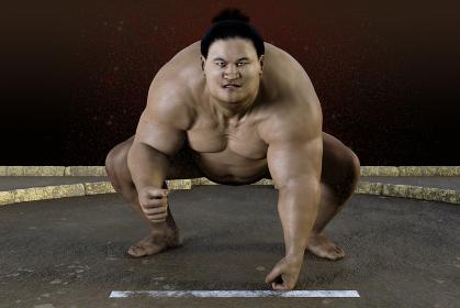 大きな体のお相撲さんが土俵で行司の掛け声「はっけよい、残った」の合図で勝負を開始する
