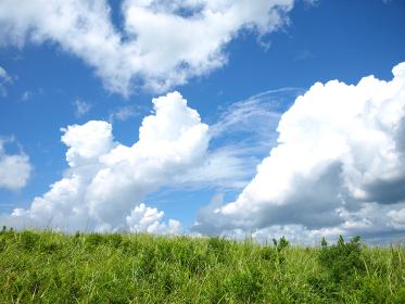 梅雨明けの高原に初夏の風が吹く 純白の雲がゆっくり動いていく