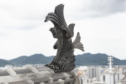 姫路城の鯱鉾
